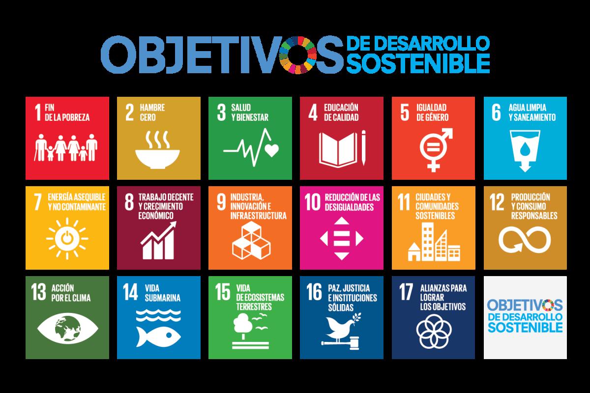 El derecho a comprender y los Objetivos de Desarrollo Sostenible.